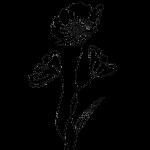 flower grid 10