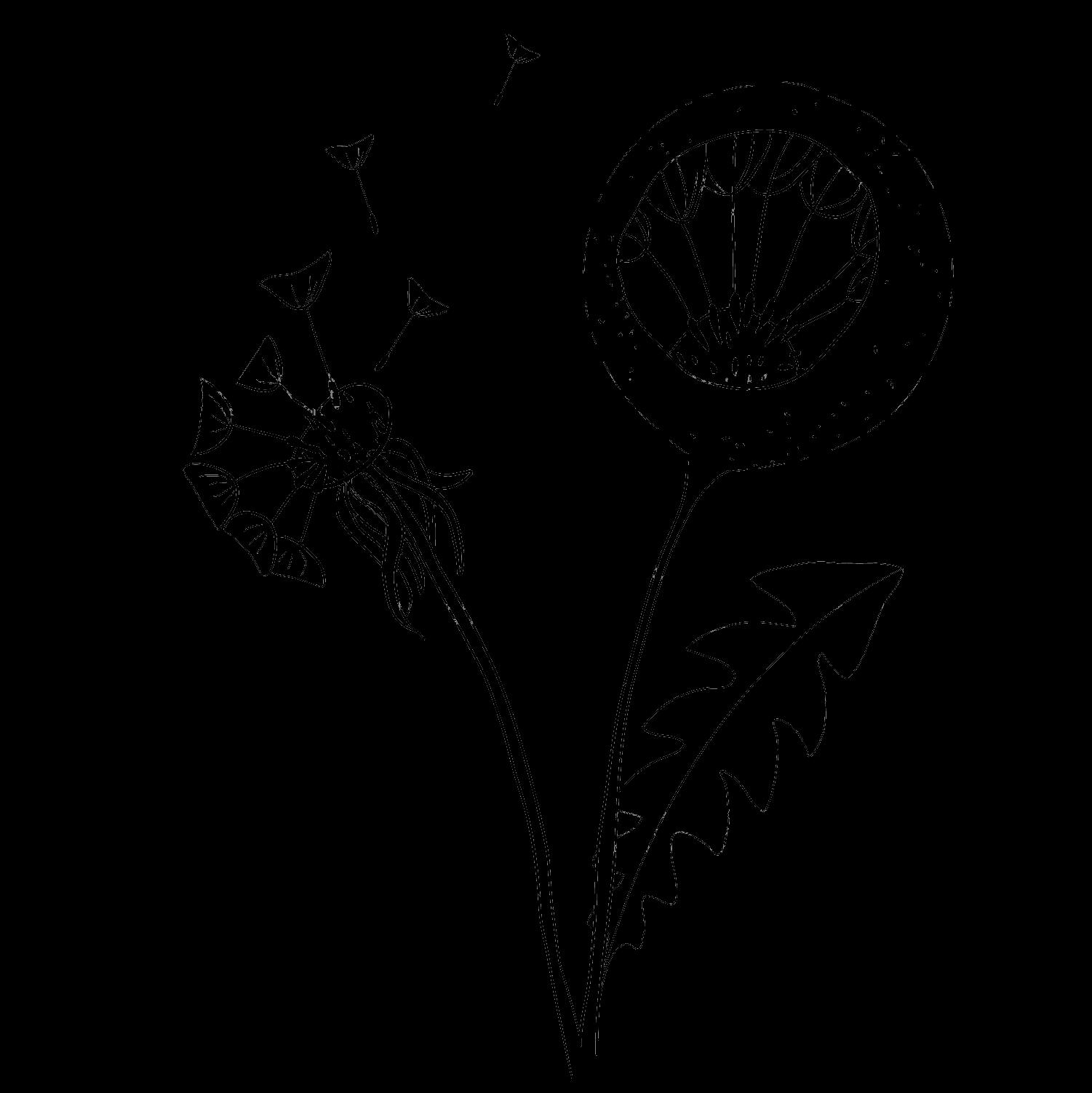 flower grid 6