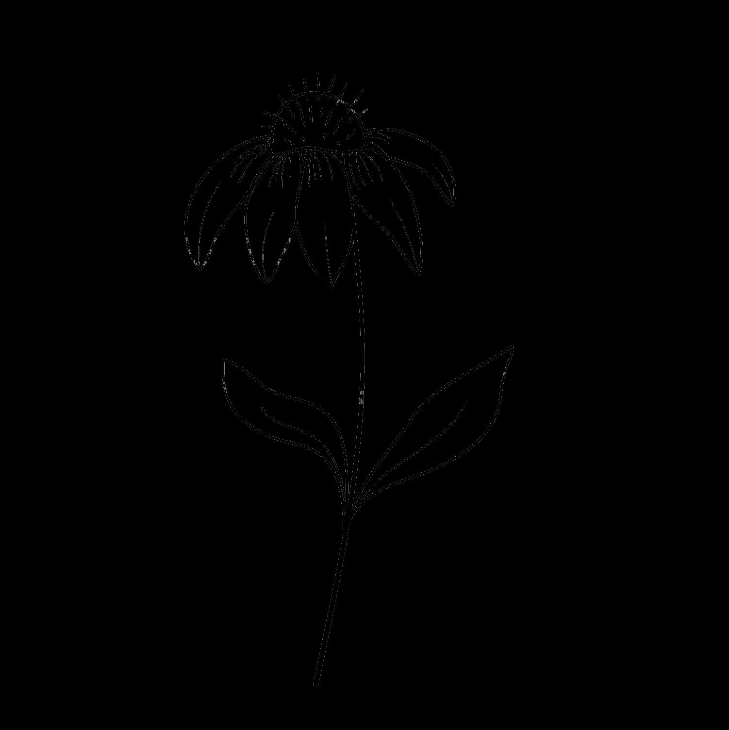 flower grid 7