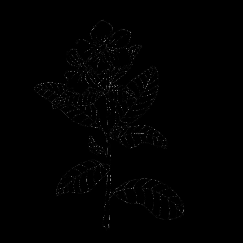 flower grid 8